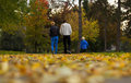 Walk in the park family on beautiful autumn Royalty Free Stock Image