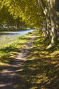 Walk path along the river Royalty Free Stock Photo