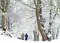Walk in the snow Stock Photography