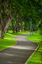 Walk way in green park. Royalty Free Stock Photo