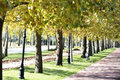 Walk way in the park Royalty Free Stock Photo