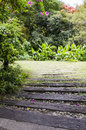 Walk way to the garden Royalty Free Stock Photos