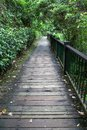 The walk way from wood for walk in sun moon lake at taiwan. Royalty Free Stock Photo