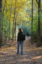 A Walk in the Woods Stock Photography