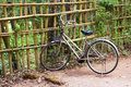 Walking bicycle with a basket near a bamboo fence Royalty Free Stock Photo