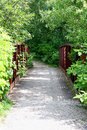 Walking bridge on trail in the woods a little old iron railed is overgrown with green plants and vines a stone path Stock Image