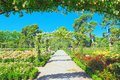 Walking through Buen Retiro Park. Rose Park Royalty Free Stock Photo