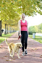 Walking with dog blond woman her golden retriever in the park Stock Images