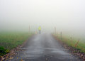 Walking dog in fog person walks countryside on a foggy day Royalty Free Stock Photography