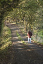 Walking down a shady country lane Royalty Free Stock Photo