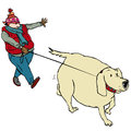 Walking fat dog man with hat Royalty Free Stock Photo