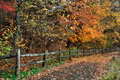 Walking path fence rainy day amid brilliant colors autumn sharon woods southwestern ohio usa Stock Photo