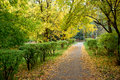 Walking path in park autumn Royalty Free Stock Images