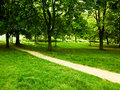 Walking path through park a dirt in a quiet wooded Stock Photography