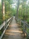 Walking Path of Peace