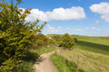 Walking path to ivinghoe beacon chiltern hills buckinghamshire england uk english countryside between dunstable bedfordshire and Royalty Free Stock Photo