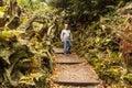Walking through the stumpery at biddulph grange staffordshire Royalty Free Stock Photography