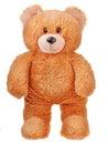 Walking toy teddy bear Royalty Free Stock Photo