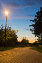 Walking trail in evening park in summer Royalty Free Stock Photo