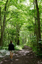 Walking woman in forest Royalty Free Stock Photo