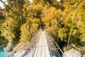 Walking wooden suspension bridge in tropical jungle Royalty Free Stock Photo