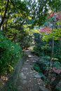 Walkpath and stone stairs in garden Royalty Free Stock Photo
