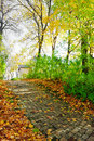 Walkway in autumn park Royalty Free Stock Image