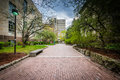 Walkway and buildings at Ryerson University, in Toronto, Ontario Royalty Free Stock Photo