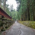 Walkway in Nikko`s World Heritage Sites with japanese stone lanterns and fresh green trees , Tochigi , background Royalty Free Stock Photo