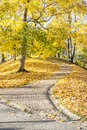 Walkway in park at autumn curvy that is covered with tree leaves Stock Image