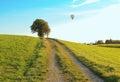 Walkway Through Rural Landscap...