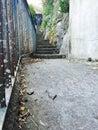 Walkways and steep steps in narrow through sorrento italy Royalty Free Stock Photo