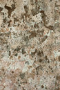 Wall background texture cement peels patches grunge stained rugged look Royalty Free Stock Photo