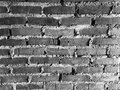 Wall of destiny our was here Royalty Free Stock Photos