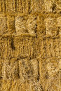 Wall of dried straw Royalty Free Stock Images