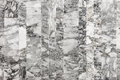 Wall granite texture background, Marble background, Granite tile Royalty Free Stock Photo