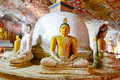 Wall Paintings And Buddha Statues At Dambulla Cave Golden Temple Royalty Free Stock Photo