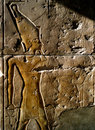 Wall Relief Stock Photography