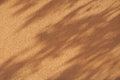 background wall shadow leaves brown orange Royalty Free Stock Photo