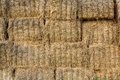 Wall surface of the straw bales Stock Photo