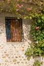 Wall of a traditional house with window and climbing plants Stock Image