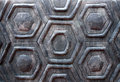 The wall turtle shell texture Royalty Free Stock Photo