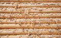 Wall from wooden logs Royalty Free Stock Photo