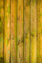 Wall wooden planks covered paint primer the of with Royalty Free Stock Photos