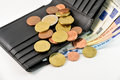 Wallet and euro money Royalty Free Stock Photo