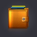 Wallet this is file of eps format Royalty Free Stock Image