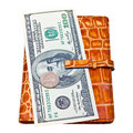 Wallet filled with money  on white Royalty Free Stock Photos