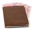 Wallet with ukrainian banknotes leather isolated on white Royalty Free Stock Photos