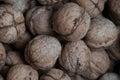 Wallnuts Royalty Free Stock Photo