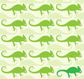 Wallpaper images of chameleon illustrations Royalty Free Stock Image